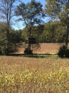 hunting blind at Woodard Whitetails of Kentucky